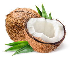stock-photo-coconut-with-half-and-leaves-on-white-background-393850891.jpg