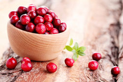 stock-photo-fresh-and-delicious-cranberries-fruits-and-vegetables-326472632.jpg