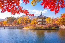 stock-photo-gyeongbokgung-palace-with-maple-leaves-seoul-south-korea-534415435.jpg